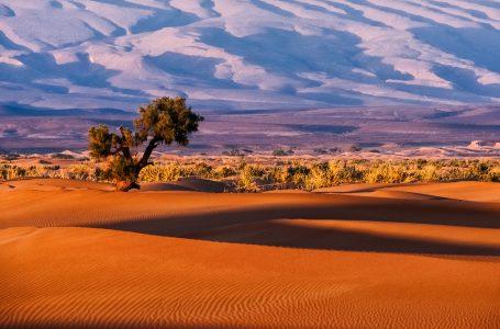 דרום מרוקו
