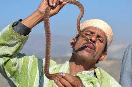 הונאות ורמאויות במרוקו וכיצד להימנע מהם